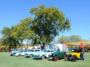 Vintage & Classic Car Rally in Jaipur